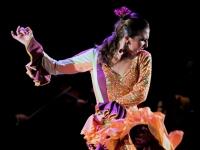 19 et 20 Juillet 2013 Fiesta Flamenca